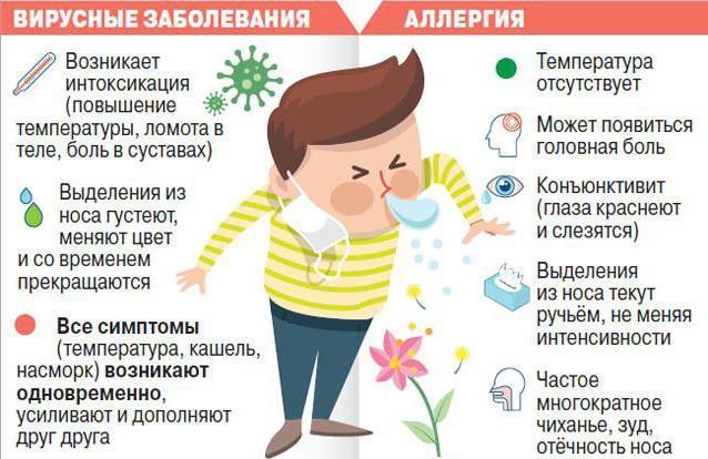 Аллергия и основные виды аллергенов