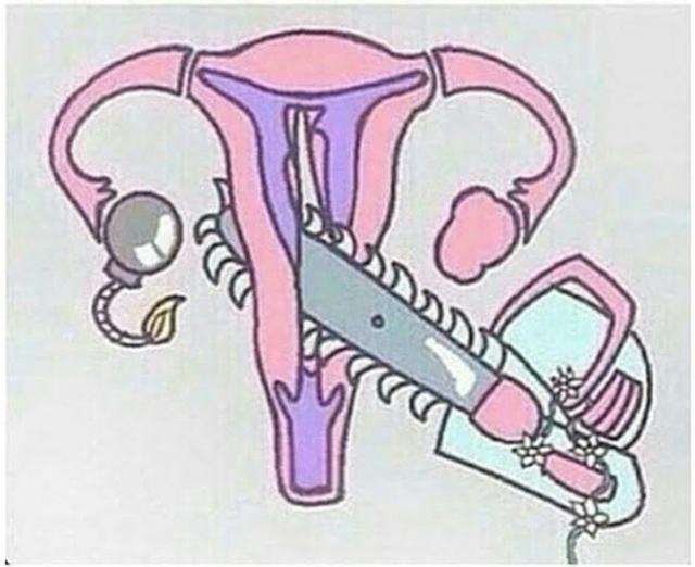 Важные факты о менструации