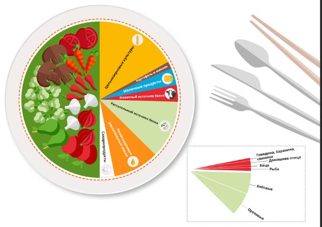 4 факта о пользе продуктов растительного происхождения