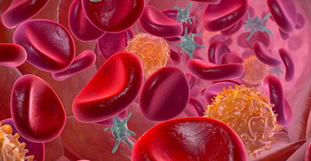 Все о холестерине - в статье от эксперта medaboutme