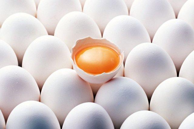 «плохой» и «хороший» холестерин: вся правда в вопросах и ответах