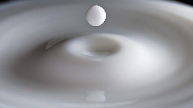 Молоко: «суперфуд» или опасный продукт?